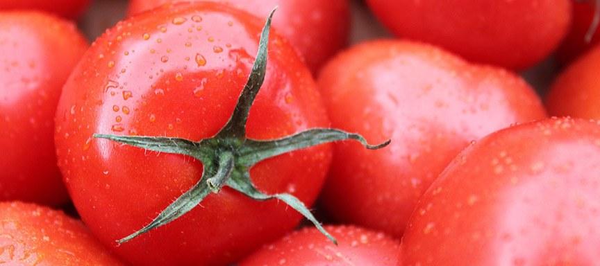 Tips tomaten