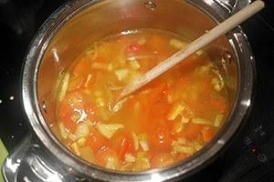 mexicaanse groente soep 01