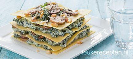 Open lasagne met spinazie