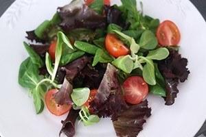 frisse salade met zalm 01