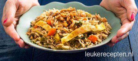Vegetarische nasi met omeletreepjes