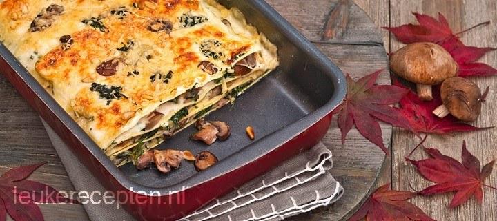 lasagne paddestoelen