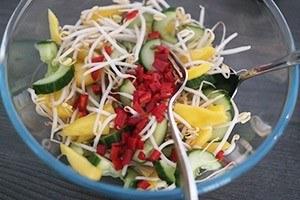 oosterse salade met biefstuk 01
