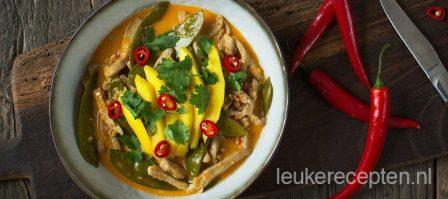 Verse rode curry met runderreepjes