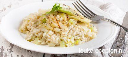 Vegetarische venkel risotto