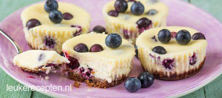 Mini cheesecake met blauwe bessen