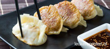 Gyoza (Japanse dumplings)