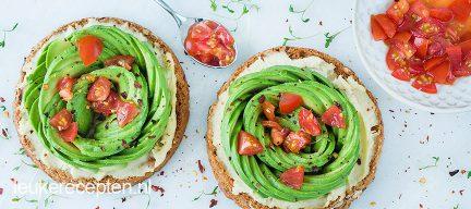 Beschuit met hummus en avocado roos