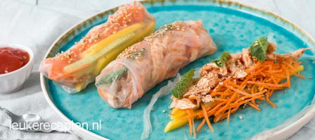 Summer rolls met pulled chicken