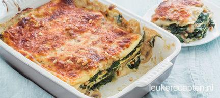 Lasagne met champignon saus